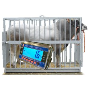 Piattaforma elettronica per la pesatura di animali